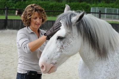 Anne-lorraine-1487676090