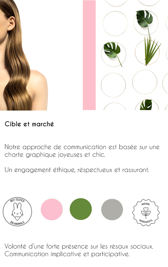 Presentation_poni_5-1488461551