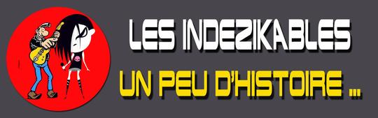Un_peu_d_histoire_gris_indez-1488809198