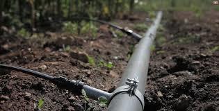 Irrigation-1489867262