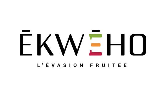Ekweho_logo_noir_couleur_rvb-1490021742