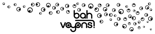 Mailchimp_logo_bah_voyons_-1490439622