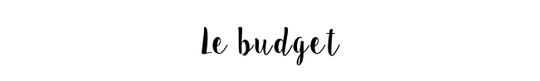 Le_budget-1491205129