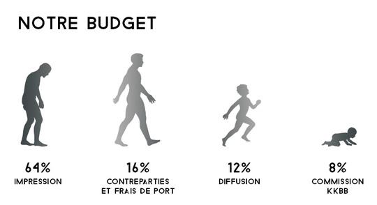 Budget-bb-1491229580