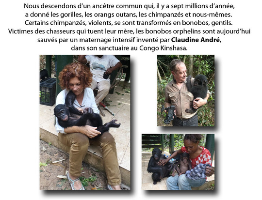 Claudine_andree_def_coupe-1491581925