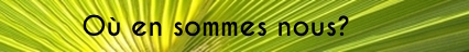 Palmier_banderole_-_copie_8-1491646090