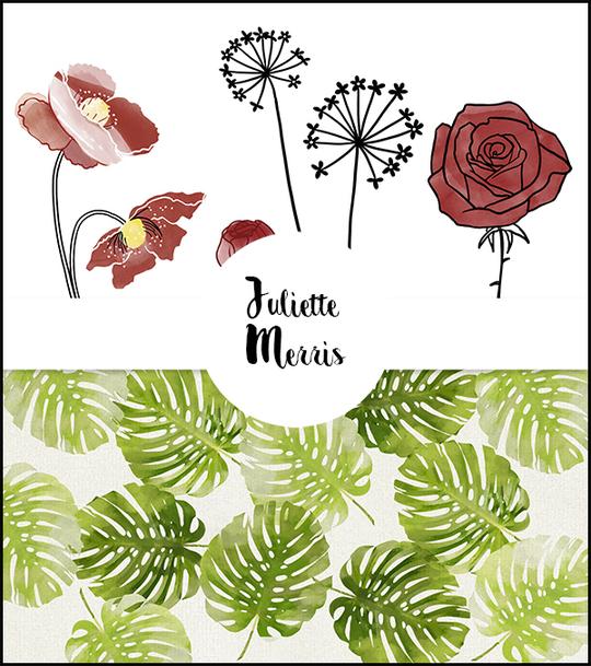 Juliette_motifs_2-1491819559