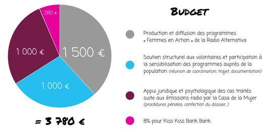 Budget_1_-1491989609