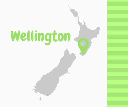 Wellington__1_-1492408273