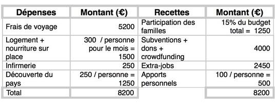 Budget-1492535491