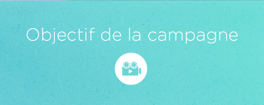 Objectif_de_la_campagne_2-1493139768