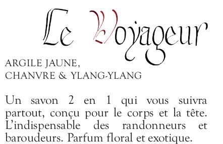 Voyageur2-1493288610
