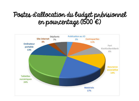 Budget-previsionnel-1494335268