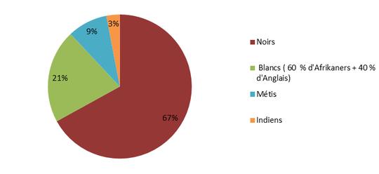 Composition ethnique de la population sud-africaine actuelle