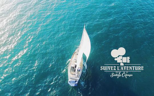Sailing_cotinga_aventure-1494777168
