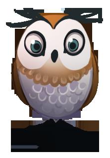 Owl-1495465054