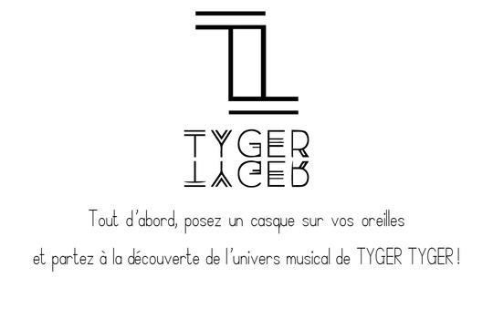 Kkbb-description-projet-tyger-partie_1-1495468963
