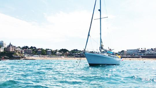 Sailing_cotinga-1495473841