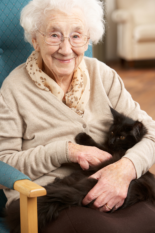 Senior-women-are-living-alone-1496315904