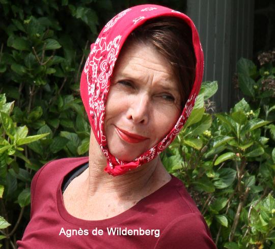 Agn_s_de_wildenberg_br-1496475780
