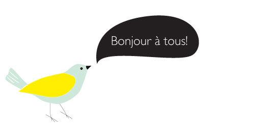Oiseau-bonjour-1496489734