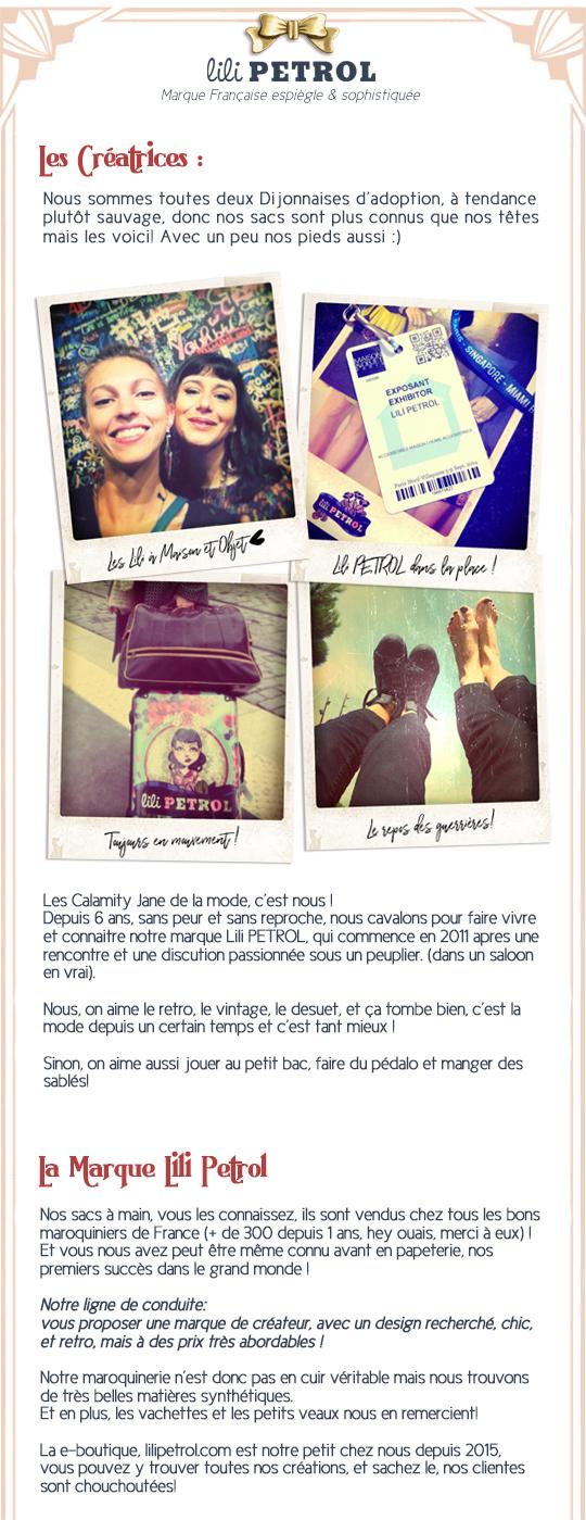 Presentation_du_projetdef_lescreatrices_lamarquedef-1496587431