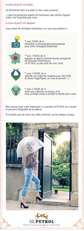 Presentation_du_projetdef_lacollecte1def-1496590536