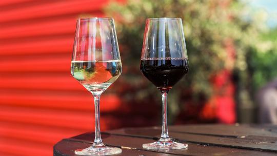 Vin-projet-1496678108