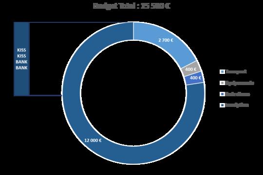 Budget-1497433433