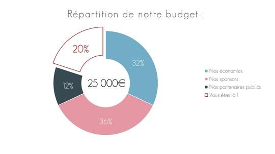 Budget-1497478777