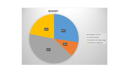 Budget-1497794140