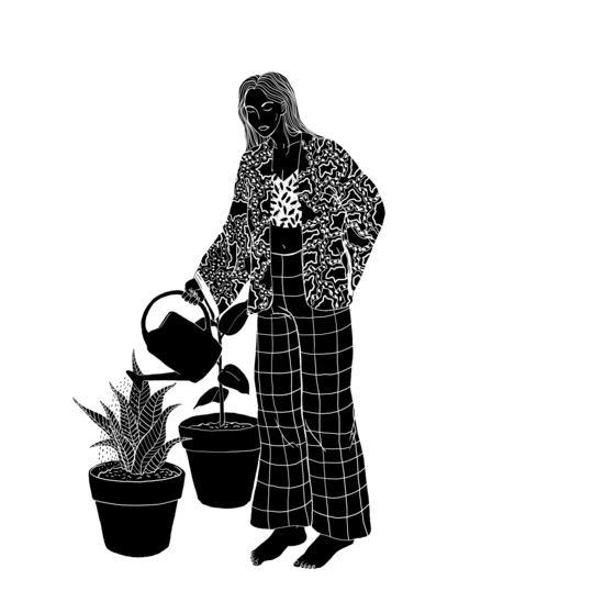 Plantes-1497921116