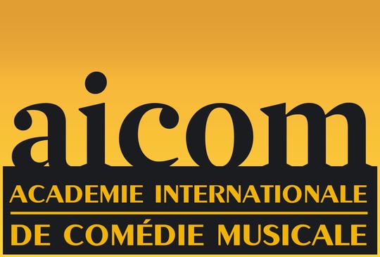 Logo-aicom-1497988159