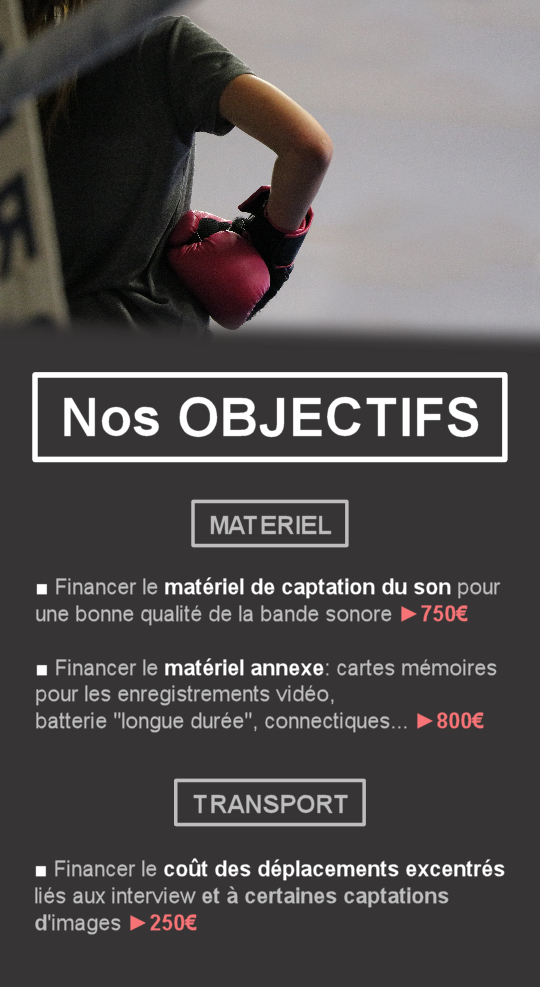 Objectifs_boxe_rose-1498306440