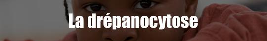 La_dr_panocytose-1498588127