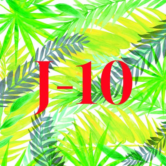 Crowd-j-10-1499074075