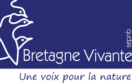 Logo_bv_signature_bleue_transparent-1499255079