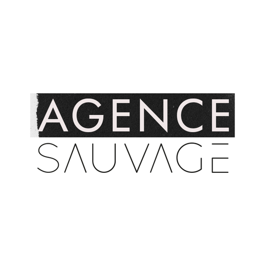 Logo_agence_sauvagecarre-1499263577