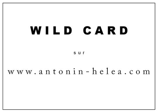 Wild-card-2-1499373517