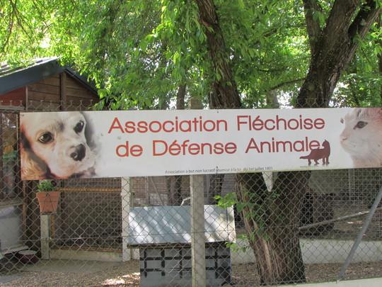 Refuge_animalier_aidez_nous___garder_notre_salari__3-1499613372