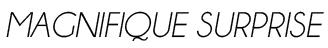 Magnifquesurprise-1499834568