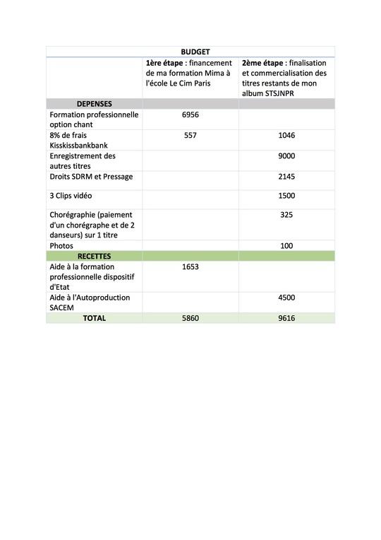 Budget_de_financement_de_ma_formation_mima_au_cim_et_de_l_album_physique_stsjnpr-1500154238