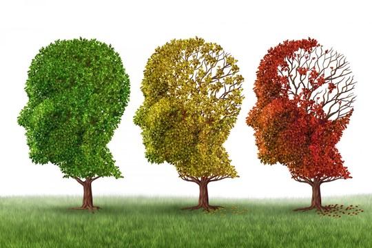 Alzheimer-1500566001