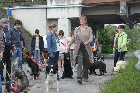 Mumu_chiens_1-1500941366