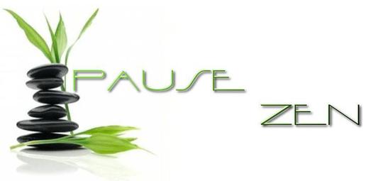 Pause-zen-1502618696