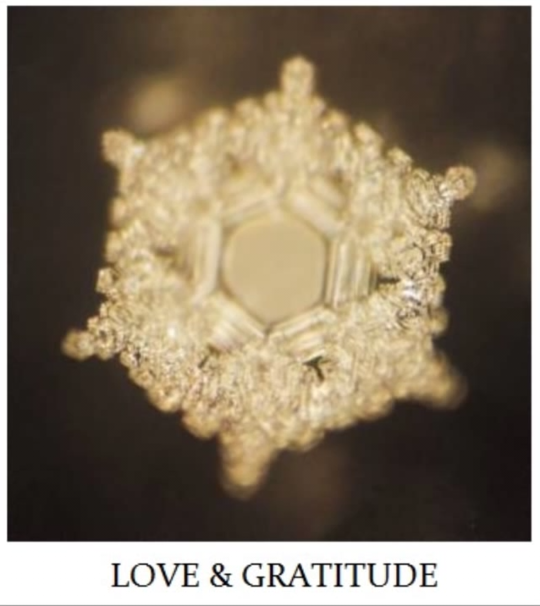 Water_crystal_love___gratitude-1502724299