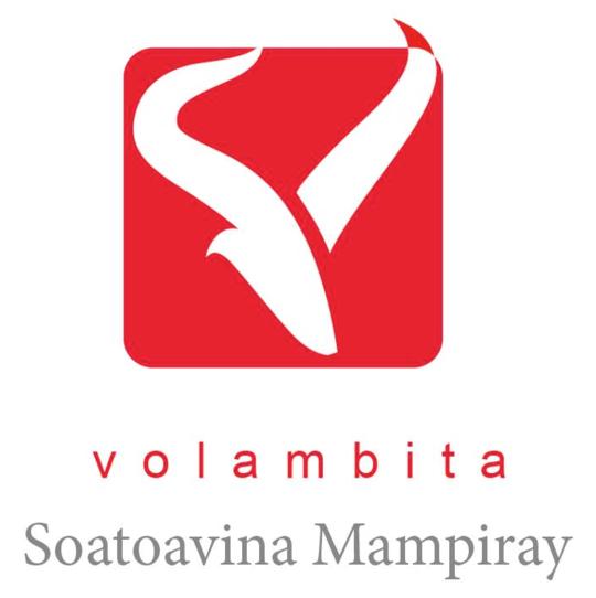 Logo_volambita-1503319362