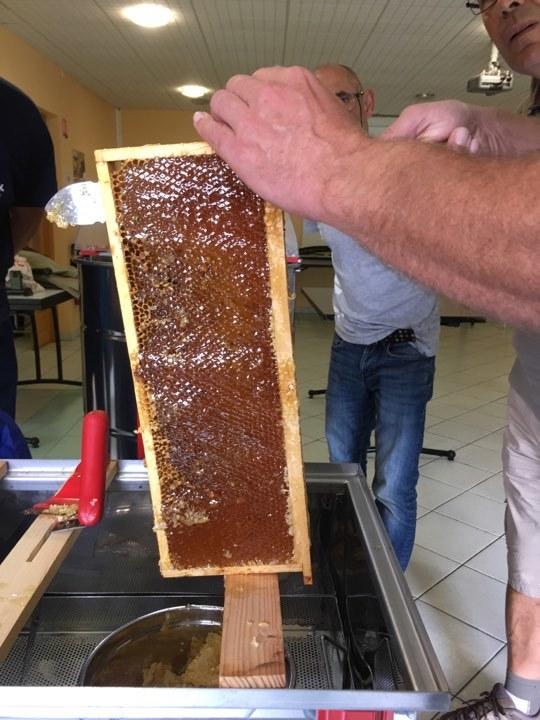 2017-08-05-recolte-miel-parc6-1503685018