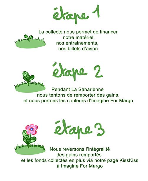Plante-1504021333