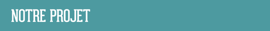 Projetb-1504087470